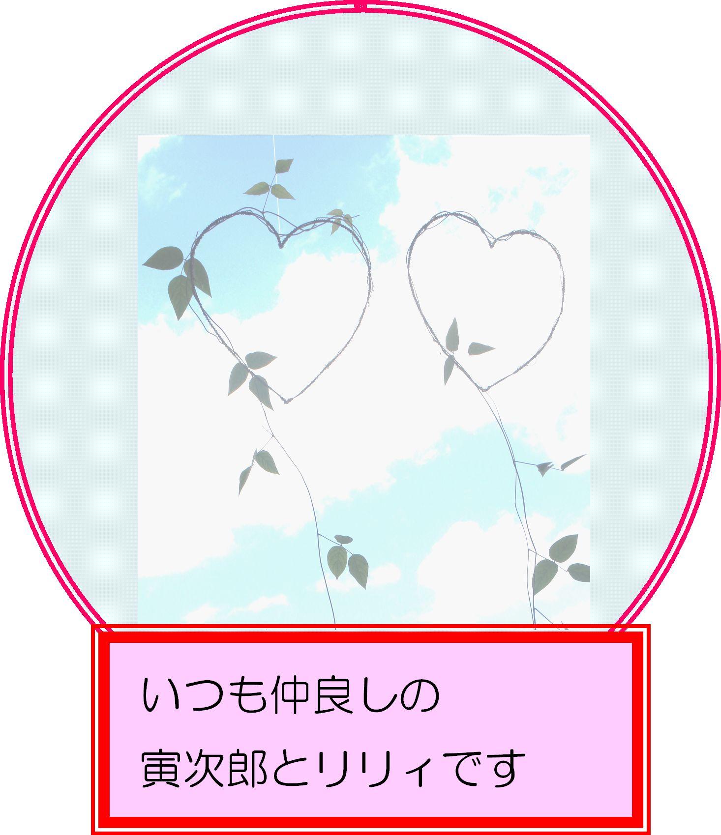 奄美中央病院1.jpg